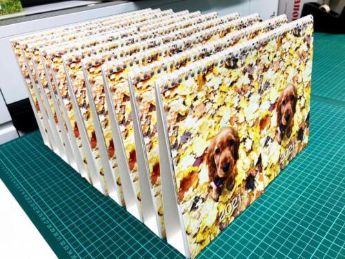 Krásná série podzimních Kalendářů s Pejskem velikosti A5 stolní